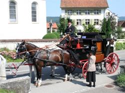 Fahrsportgruppe Birsigtal
